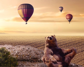 Bear and Hot Air Balloons Digital Background/Digital Backdrop for Photoshop, Photoshop Elements, Etc. Instant Download/Spring/Summer