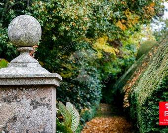 Wall art nature / nature wood wall art / art landscapes gardens / garden photography print / garden hedge landscape / autumn nature photo