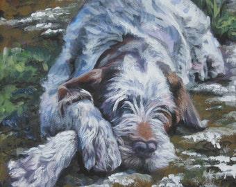 Spinone Italiano dog art CANVAS print of LA Shepard painting 12x12