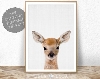 Deer Print, Woodland Animals, Nursery Wall Art Decor, Baby Shower Gift, Girl, Boy, Large Printable Digital Download, Baby Deer, Fawn Head