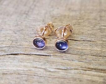 Iolite Stud Earrings 14k Gold