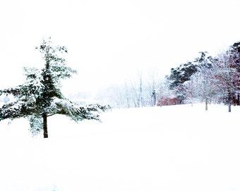 Art, Photography, Wall Art, Nature, Home Decor,Fine Art Print,Cascade Park,Photo,Grand Rapids,Michigan.Winter, Winter Print, Snow Art, Snow