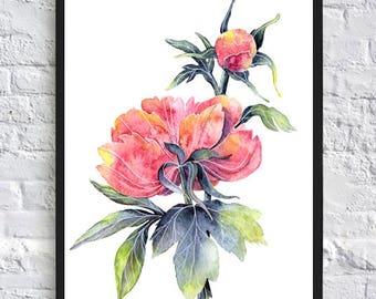 Pink peony print flower wall art flower poster watercolor flower print illustration poster 5x7 8x10 8x12 11x14 12x16 12x18