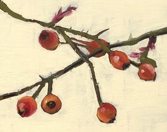 Rosehips, original oil painting on panel 15x15cm