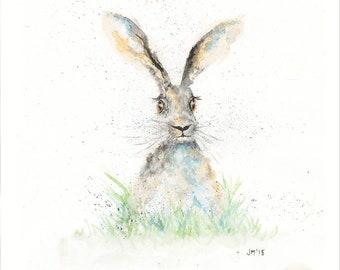 Hare - Sketch II - Giclée Print