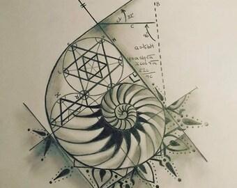 Fibbonacci Shell Tattoo Design