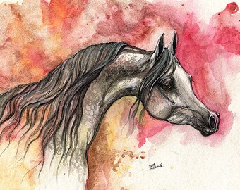 Grey arabian horse, equine art, equestrian portrait,  original pen and watercolor painting