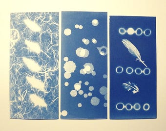 Serie of 3 small cyanotype cards