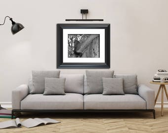 Animal / Wildlife Black and White Photograph Shy Squirrel - Fine Art Canvas - Home Decor Wall Art Prints Unframed