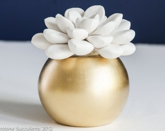 Large Succulent Sculpture with Round Gold Container, Tabletop, Desktop Accessory, Modern Minimalist Home and Office Decor