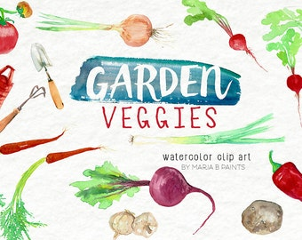 Watercolor Clip Art - Garden Veggies-Personal Use-Instant Download-Beets-Radish-Onion-Carrots-Potatoes-Spring-Summer-Fresh-Fruit-Tomato