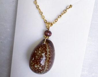 Hawaiian seashell necklace