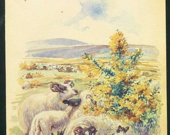 Vintage Month of May Nature Scene, Botanical,  Bookplate Illustration, Print for Framing, May with Sheep, Lambs,Blooming Shrub, Nature Print