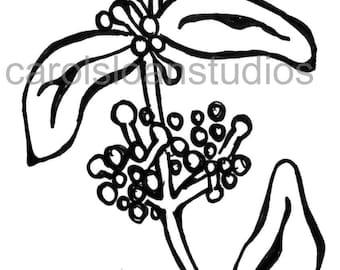 Thermofax Screen Stem Seed Head