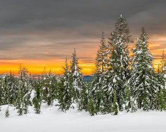 Sunset at Crater Lake - lake,oregon,pine trees,panorama,national park,earth tones,office decor,home decor,sunset,snow,winter,mountains,green