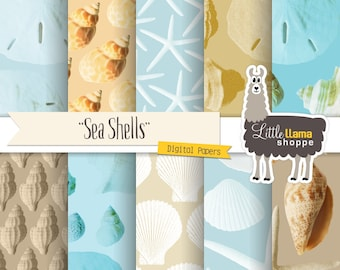 Sea Shell Digital Paper, Beach Digital Backgrounds, Seashell Scrapbook Paper, Ocean Digital Paper, Marine Life Papers, Commercial