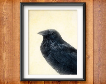 Raven Watercolor Wall Art - Wall Decor - Blackbird Art Print - Raven Bird Wall Art Print - Raven Art - Black Bird Print  2171