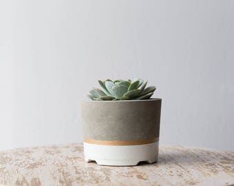 Mother's Day Gift for Her, Large Concrete Planter, White & Gold
