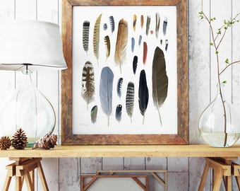 Large feathers watercolor print 16x20, rustic nature wall art, natural history art