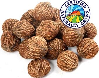 Black Walnuts - 1 LB - The Happy Nut