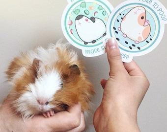 Guinea-Pig Stickers