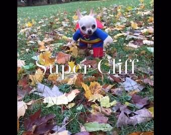 Super Hero Doggy Costume