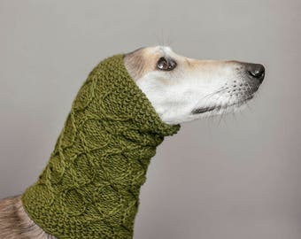Green dog snood //  ready to ship // for saluki, afghan hound or similar // hand-knit 100% wool dog snood // tight sighthound snood //