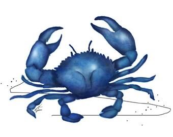 Blue Crab - nautical crab art print, beach decor