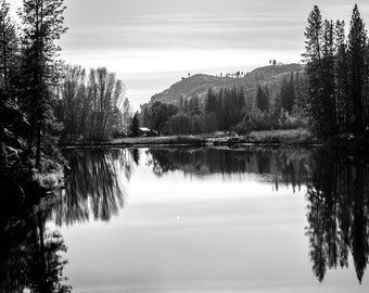 Homstead Reflections
