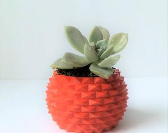 Succulent Pot Plastic 3-D Bowl Planter Pot Desk Accessory Geometric Design Plant Pot Red