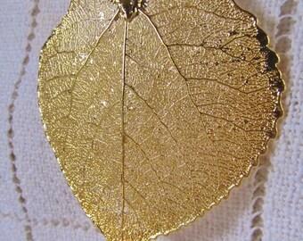 24 Kt Gold Dipped Aspen Leaf, Ornament, Pendant