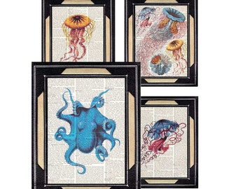 NAUTICAL ART PRINTS Octopus Jellyfish blue red yellow illustration Natural Science Marine Ocean Beach dictionary book page wall decor 8x10