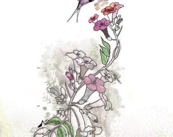 Hummingbird art, Watercolors paintings Original, Pen and ink Watercolor, Pink and Fuschia