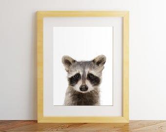 Raccoon print, Raccoon wall art, Nursery decor, Nursery wall art, Woodland nursery, watercolor raccoon, printable raccoon, Raccoon painting.