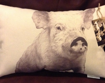 Pig Pillow / Otis