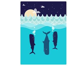 Sleepy Whales. A4, A3, A2, A1.