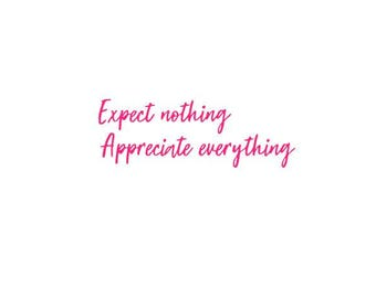Expect Nothing APPRECIATE EVERYTHING - Quality Vinyl Decal; Christmas Decal, Yeti Decal, Car Decal, Tumbler Decal, Fast Processing!