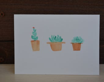 Potted succulent water color card