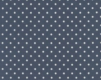 Timeless Treasures Dot - Denim _ Fabric by the yard