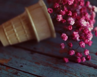 flowers, pink, ice cream cone, teal, fine art photography