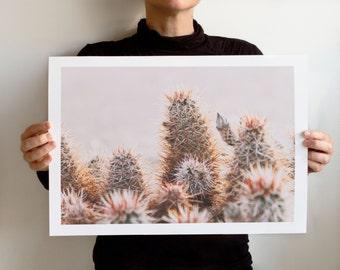 Art Print Dry Land No 5918, Landscape California, Joshua Tree National Park