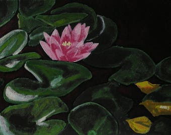 Pink Lilly Pad Blossom, Realistic Landscape Painting, Peaceful and Colorful