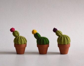Petit point - Cactus-wool knit, handmade interior design, textile, green art, plant eternal