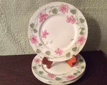 D&C France Limoges Plates-3 - Pink Flowers Hand Painted