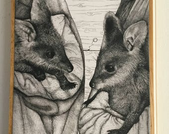 Print to Stone - Swamp Wallabies