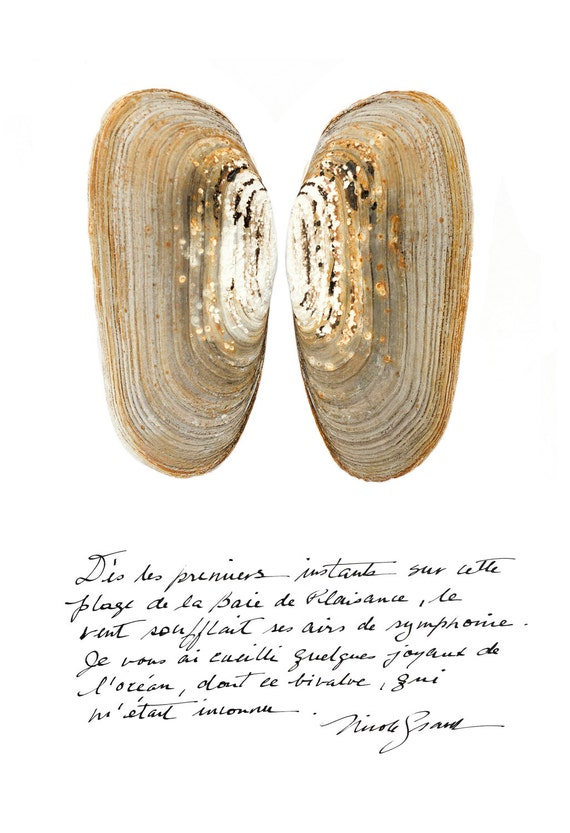 Bivalve poster with calligraphied poetry