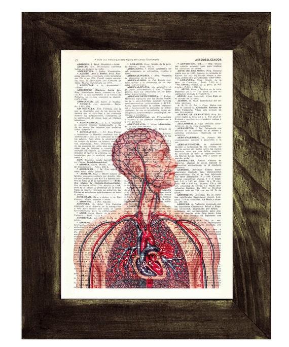 Anatomy book print  Human Heart and arteries Circulatory System - Dictionary Book Page Print Art on Book Page SKA050