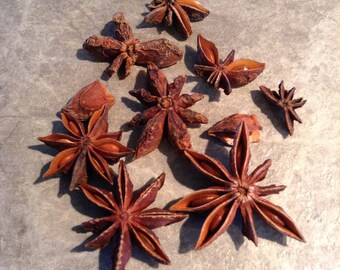 Star Anise Whole Pieces - 1 Pound. Great For Crafts, potpourri and Home Deorating