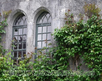 Birr Castle Demesne, County Offaly, Ireland - Original 8 x 10 Art Photograph Note Card with Envelope