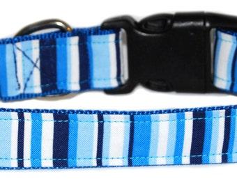 Caribbean Blue Martini Dog Collar